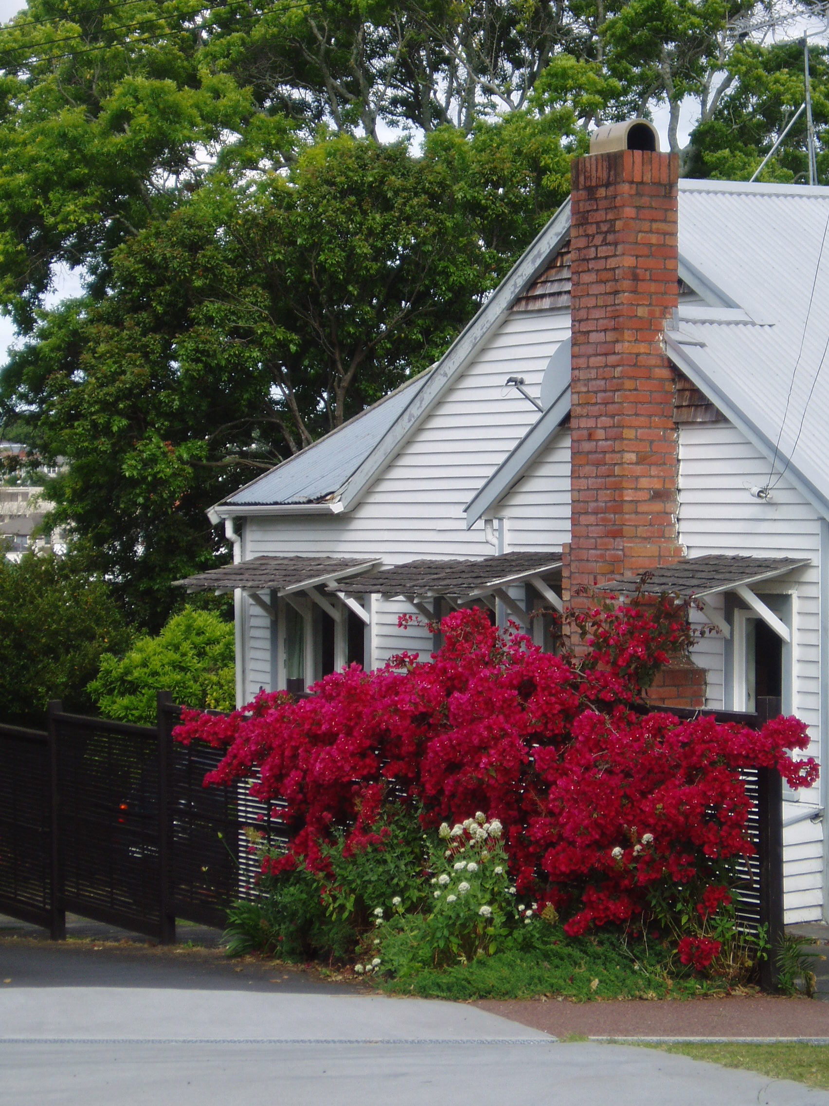 Buying a House In New Zealand